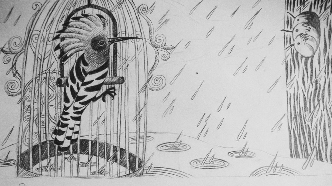 11- A Cage Went in Search of a Bird