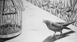 9- A Cage Went in Search of a Bird