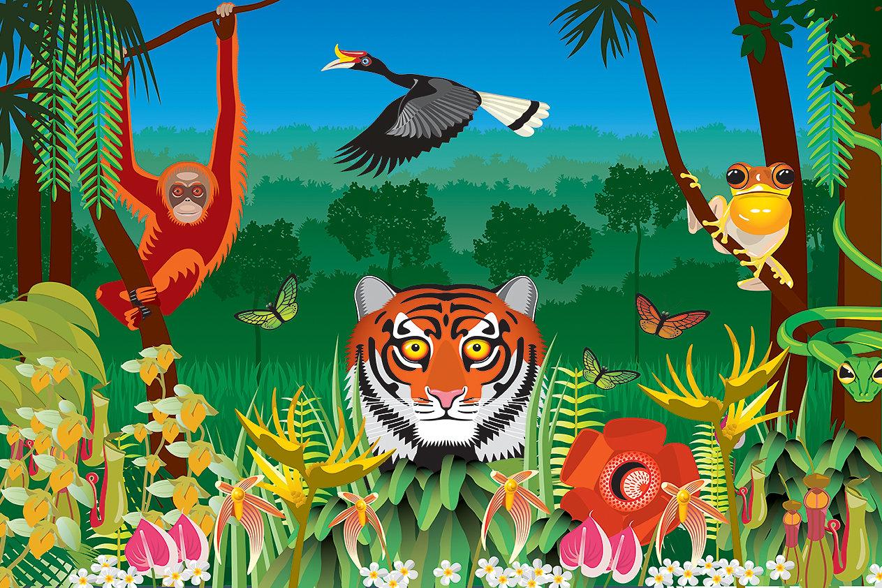 100 wildlife murals for walls best 25 wallpaper murals wildlife murals for walls rocket walls wall murals and wall art rainforest wildlife