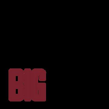 BigTine_Logo_Fnl_PMS-01.png