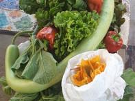 Le verdurine dell' orto