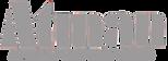 Logo ATMAN.png
