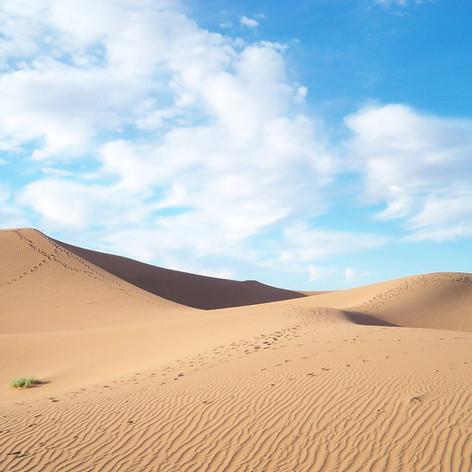 Schritte in der Wüste