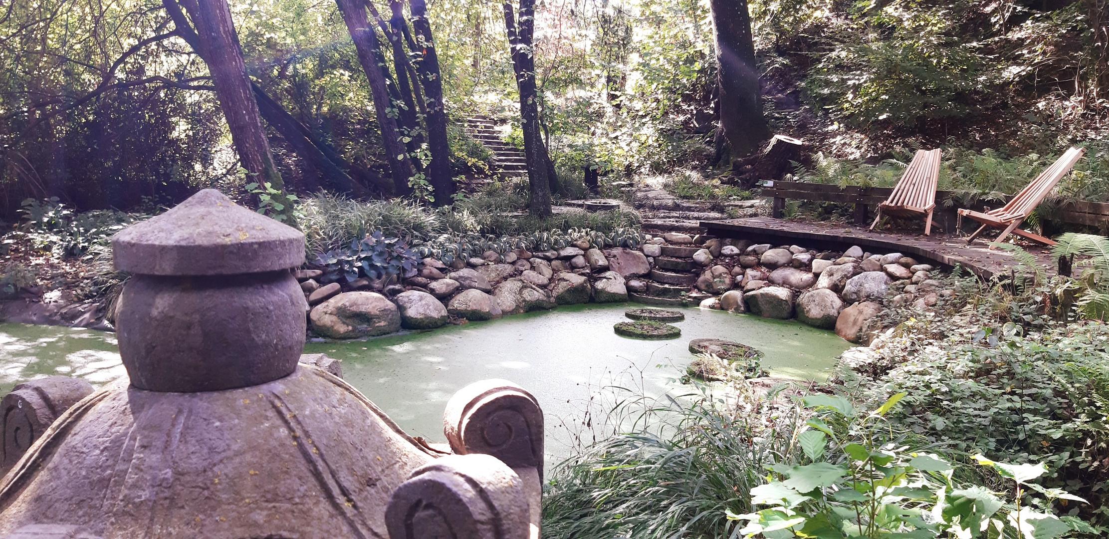 Natur erleben im Garten der Stille