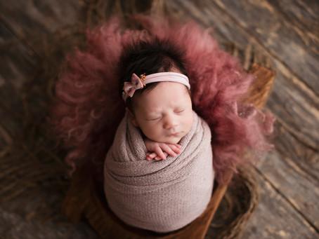 Madilyn Newborn Session - Douglas, MI