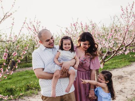 Crane Orchards in Bloom - Fennville, MI