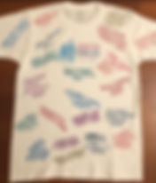 State Shirt 12.29.19.JPG