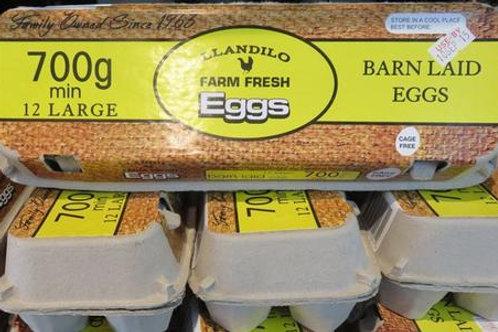 Llandilo Farm Barn Laid Eggs 700g Doz