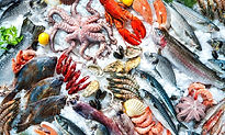 Category Seafoods.jpg
