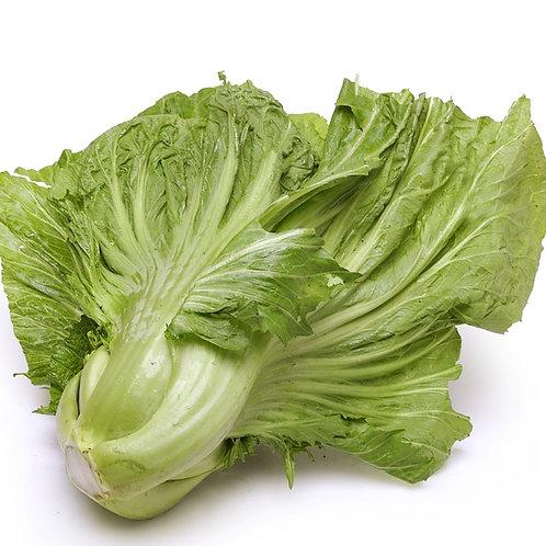 Mustard Cabbage
