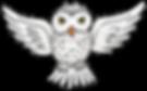 khadfield_WizardryEU_owl.png