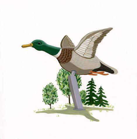 BT_duck andrew.jpg