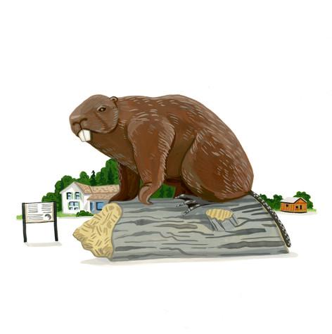 BT_nancy's beaver  beaverlodge.jpg