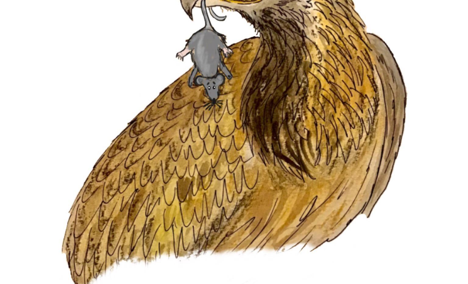 Whits fur ye no go by ye.jpeg