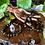 Thumbnail: Blue and Gold Tiger's Eye Healing Crystal Bracelet (8mm)