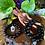 Thumbnail: Black Tourmaline Healing Crystal Bracelet (12mm)