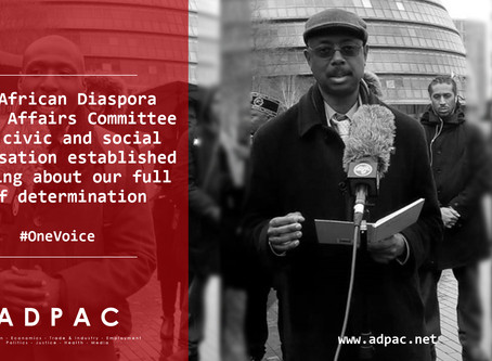 The African Diaspora Public Affairs Committee (ADPAC)