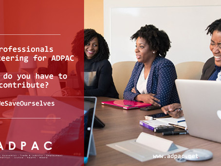 Volunteering with the African Diaspora Public Affairs Committee (ADPAC)