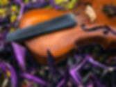 close_up_violon.jpg