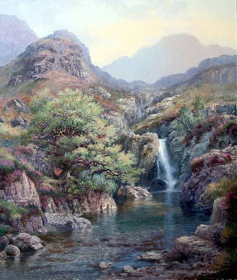 Lingcove Beck, Eskdale