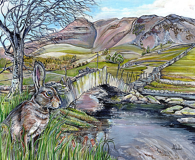 Hare at Slaters Bridge