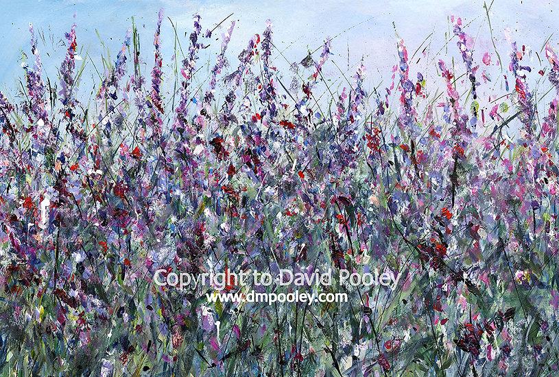 Wildflowers in Purple