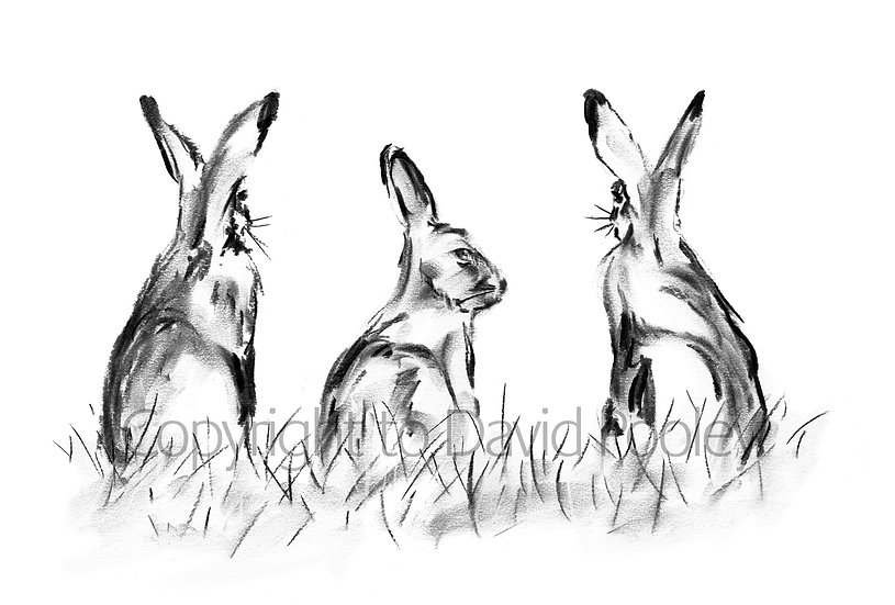 Three Hares
