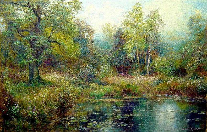 Backwater, River Brathay