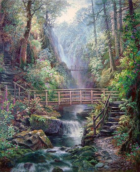 Waterfall Walk, Stanley Ghyll