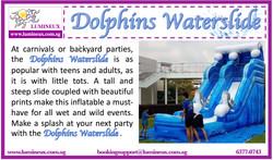 Dolphins Waterslide