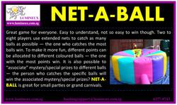 Net-A-Ball