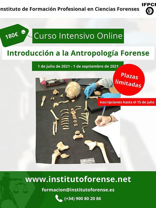 Curso Online Intensivo en Antropología Forense