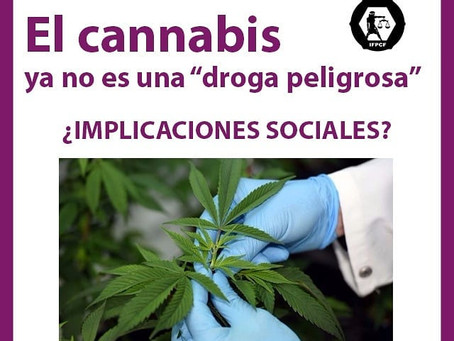 "El cannabis ya no es una ""droga peligrosa"""