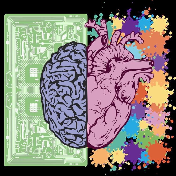Dualismo cuore-cervello