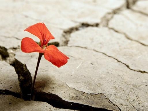 La fede favorisce la resilienza?