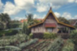 Desa Seni yoga retreat center outdoor garden