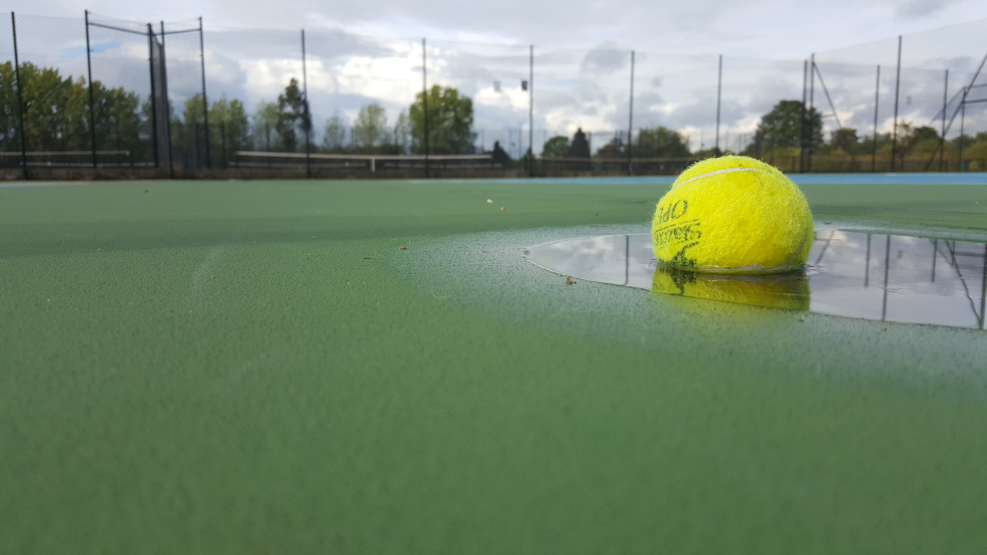 Ball in puddle.jpeg