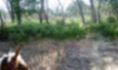 MojNarrowsHiking-riding.jpg
