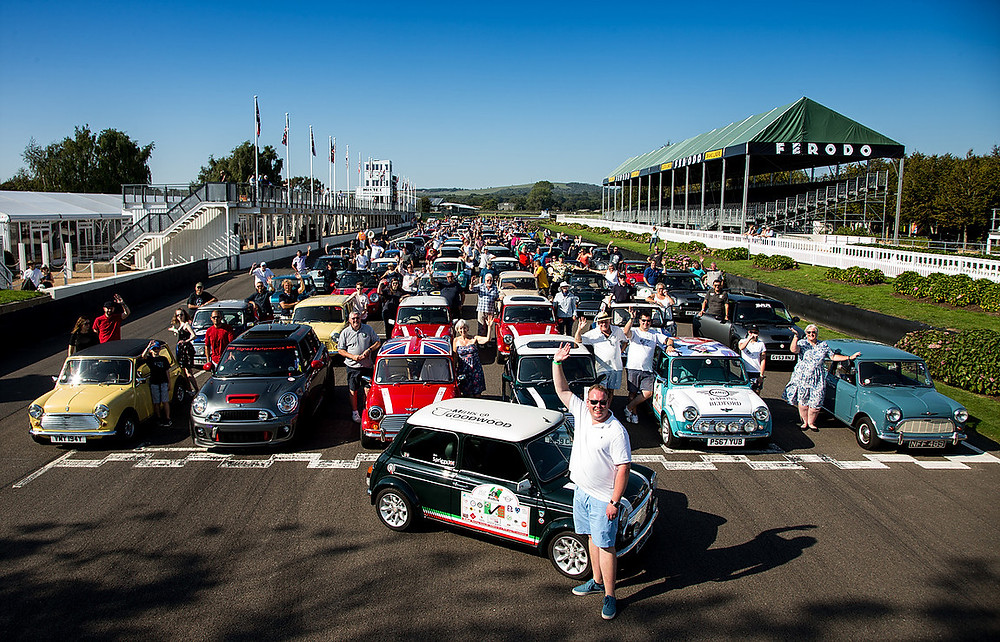 Minis at Goodwood