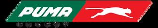 Puma Energy Logo.png