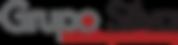 Grupo Silva logo (no signet - RGB).png