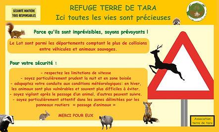 GORNA-PANNEAUX-ROUTE-2-Copier copie.jpg