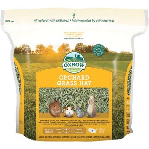 Foin oxbow Orchard Grass 1.13