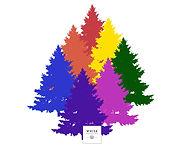 Tree CC L Back.jpg