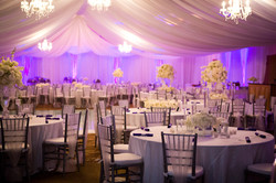 Purple uplights, chandeliers and fabric draping