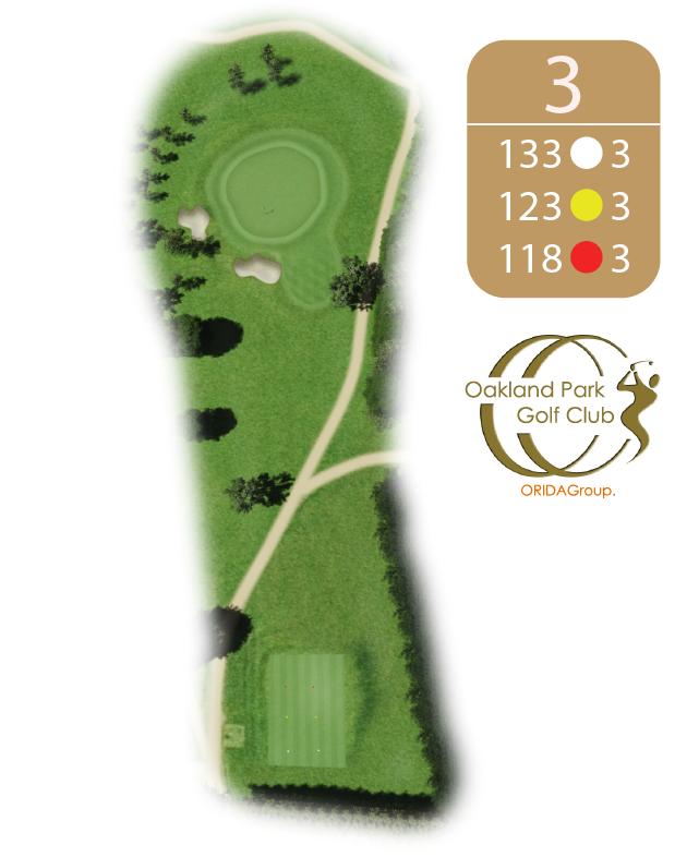 Oakland Golf Club Hole 3