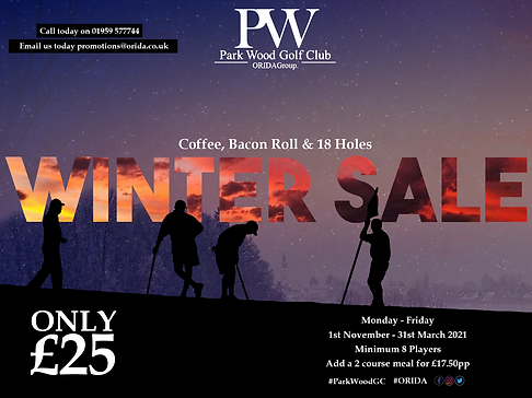 Winter Sale GS for PW.png