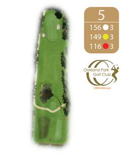 Oakland Golf Club Hole 5