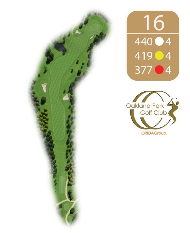 Oakland Golf Club Hole 16