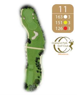 Oakland Golf Club Hole 11